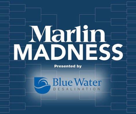 Marlin Madness graphic